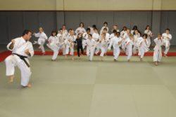 karate.ojs